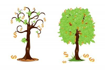 על אתר לעסק , כסף ועצים